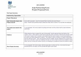 Professional Project Proposal Template Professional Project Proposal Template 10