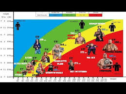 Wwe Wrestlers Height And Weight Bmi Comparison Chart Fattest Vs Fittest Hd