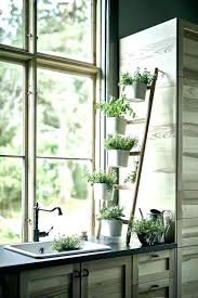 window plant shelf window shelf kitchen plant window plant shelf window kitchen plant window plant window window plant shelf
