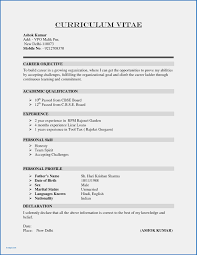10 Awesome South African Cv Template Download Write Happy Ending