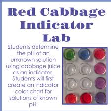 Red Cabbage Juice Indicator Chart Red Cabbage Indicator Lab