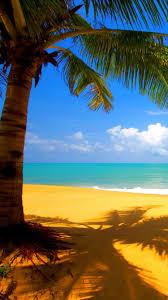 iphone 6 wallpaper beach. Interesting Beach Yellow Beach IPhone 6 Wallpapers And Iphone Wallpaper Beach O