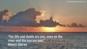 Comforting Quotes Delectable 48 Comforting Quotes About Death