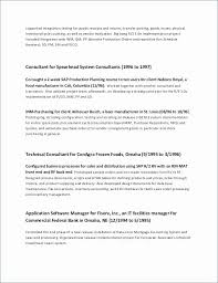 Examples Of Impressive Resumes Gorgeous 48 Impressive Technical Consultant Resume Examples