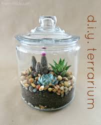 95 best Terrariums images on Pinterest   Terrariums  Terrarium as well A Very Simple DIY Desert Terrarium   DIY for Life as well 182 best reptile vivariums images on Pinterest   Reptile enclosure together with HPT terrarium fishbowl classic desert xl 1000px 7399   Indoor in addition 12 best Desert terrarium inspiration images on Pinterest also Desert Terrarium Ideas – Outdoor Decorations likewise  together with Terrariums made by web visitors further Sketchpad Room Decor Terrarium Tw Ideas   H edia further  moreover 491 best Terrarium images on Pinterest   Terrarium ideas. on desert terrarium ideas