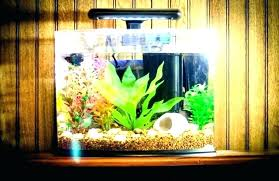 view images wall fish aquarium chrome picture frame through mounted tank photo