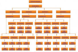 Organisational Chart Flow Chart Of Company Hubpages