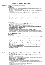 Data Warehouse Resume Examples Data Warehouse Developer Resume Samples Velvet Jobs 55