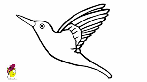 simple hummingbird drawing. Delighful Drawing Hummingbird  How To Draw A Huumming Bird Humming Easy Drawing  YouTube Throughout Simple P