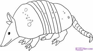 Small Picture Learn How to Draw an Armadillo Rainforest animals Animals FREE