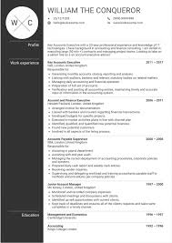 Resume Free Downloadable Templates Part 512 Account Manager Sample