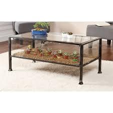 southern enterprises terrarium glass display coffee table in black ck8860