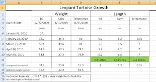African Sulcata Tortoise Growth Chart Best Picture Of