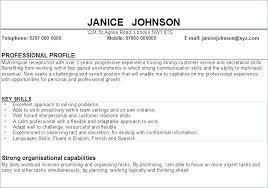 Sample Resume Example Mesmerizing personal profile resume sample andaleco