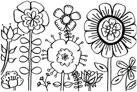 Iris Flower Coloring Page Colouring Sheet X Pages Free Vector Format