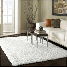 Living Room Rugs On Living Room Interesting White Shag Rug For Modern Family Room