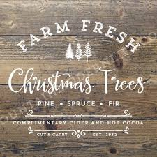 Fragrant Christmas Trees With A Cause In Los AlamitosLocal Christmas Tree Lots