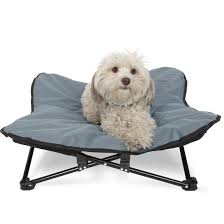 paws pals elevated pet bed for dogs cats outdoor indoor camping raised cot