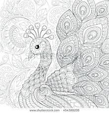 Peacock Coloring Pages For Adults Coloring Book Fun Acessorizame