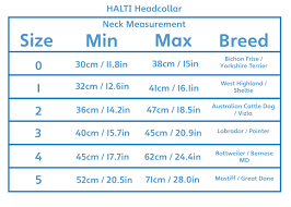 Halti Headcollar Size Chart Best Picture Of Chart Anyimage Org