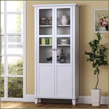 Metal Kitchen Storage Cabinets Tall Storage Cabinet With Shelves Crowdsmachinecom
