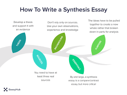how to write a synthesis essay essayhub infographics on synthesis essay writing