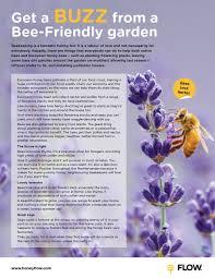 bee friendly gardens