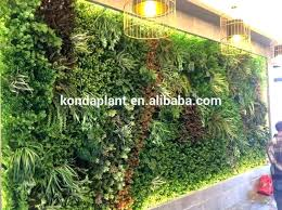wall plants outdoor wall plants outdoor china indoor outdoor artificial plants wall artificial decorative green wall wall plants