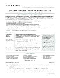 Job Objectives On Resume Classy Good Objective Resume Samples Sample Objectives For Resumes