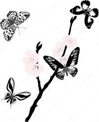 桜のピンクの花と黒蝶 ストックベクター Drpas 6785954