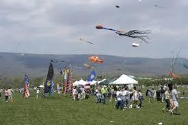 Blue Ridge Kite Festival Postponed For One Year - The Roanoke Star News