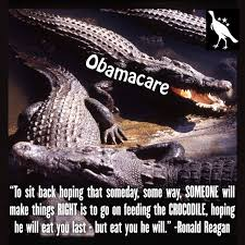 Be wary of the Obamacare crocodile! | Memes | Pinterest via Relatably.com