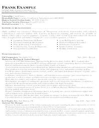 Federal Resume Writing Service Adorable Professional Resume Writing Service San Diego Download Image