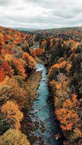 Fall wallpaper, Autumn photography ...