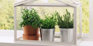 Herb Kitchen Garden 15 Indoor Herb Garden Ideas Kitchen Herb Planters