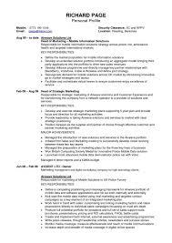 Profiles On Resumes Personal Summary Resumes Ukran Agdiffusion Resume Personal Profile