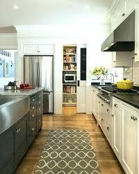 kitchen rug runners modern carpet plastic for interior uk cabinets handles runner runn