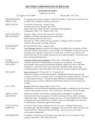 Example It Resume Full Size Of Resume Builder Reddit – Pinktours.co