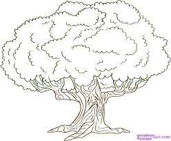Tree Coloring Pages Free Free Online