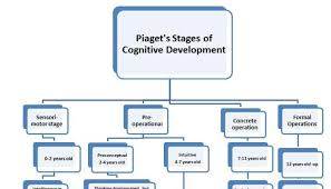 piagets theory of cognitive development and vygotsky s cultural  piagets theory of cognitive development and vygotsky s cultural historical theory and their implication an analytic essay tariqual islam sajeeb pulse
