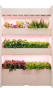vegetable garden indoor herb garden