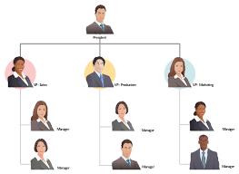 Companys Organizational Chart Draw An Organisational Chart To