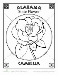 Small Picture Alabama State Flower Flower anatomy Alabama and Social studies