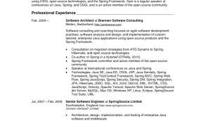 Business Analyst Resume Templates Samples Or Buying Essays Uk