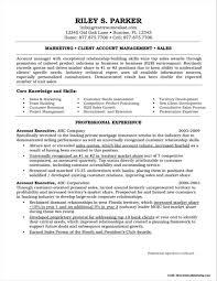 Account Executive Resume Sample Free Resume Resume It Executive