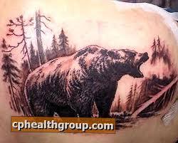 Jaký Je Význam Tetování Medvědů