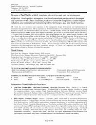 Independent Itultant Resume Policy Diplomatic Business Beauty It