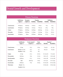 Tooth Charting Template 7 Baby Teeth Growth Chart Templates Free Sample Example