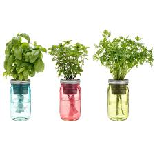 indoor kitchen herb garden. Amazon.com : Kitchen Herb Kit - Three Self-watering Indoor Planters With Organic Basil, Parsley, And Non-gmo Mint Seeds. Garden \u0026 Outdoor