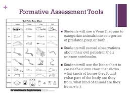 Formative Vs Summative Assessment Venn Diagram Formative Assessment Venn Diagram Free Wiring Diagram For You